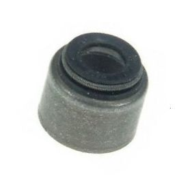 BE66-300 - Valve Stem Seal