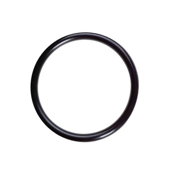 EN22-902 - O-ring for Pump Filter