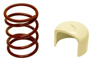 CL44-252 - High Performance Secondary Clutch Spring